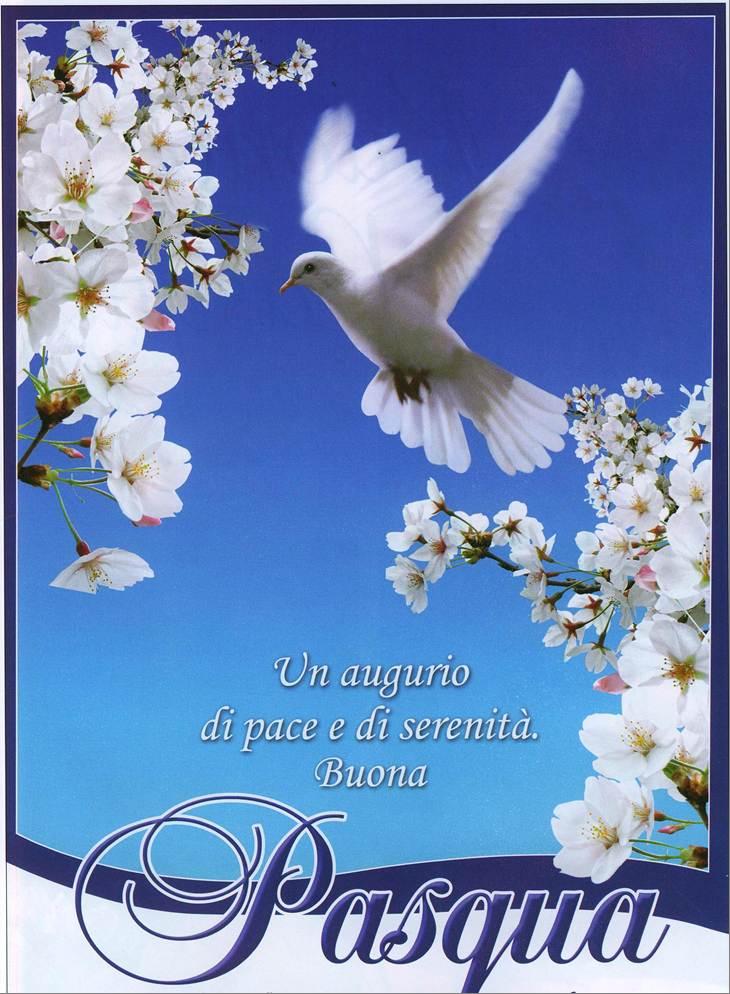 Us acli latina for Cartoline auguri di buona pasqua